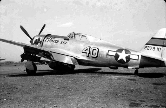 p-47-d-hun-hunter.jpg