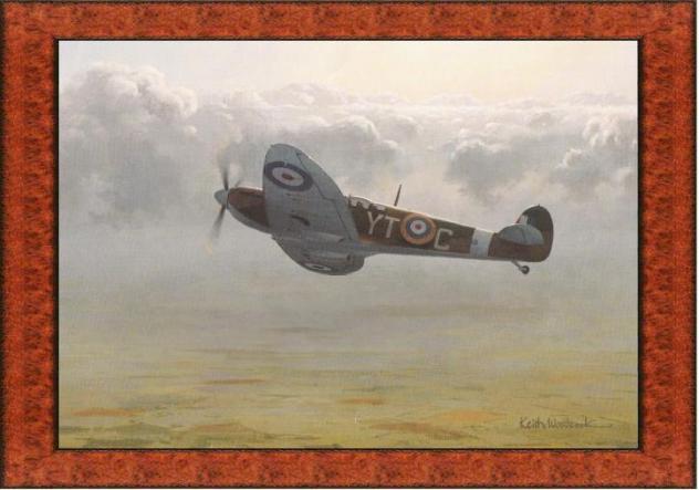 supermarine-spitfire-woodcock-2.jpg